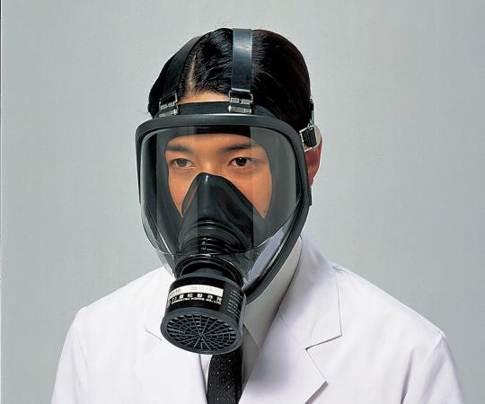 Direct Coupled Gas Mask (for Medium Concentrations of 1.0% or Lower)