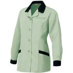 AZ-6366 Ladies' Long-Sleeve Smock