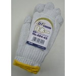 Nihonichi Work Gloves 484