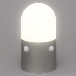 Battery Type LED Sensor Light