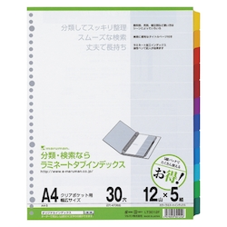 Laminate Tab Index, A4S, 30 Holes, 12 Tabs 5 Sets