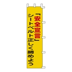 "Banner ""'Declaration of Safety' Make Sure Your Seatbelt is fastened correctly"" Banner -5"