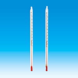 Rectangular Red Liquid Thermometer