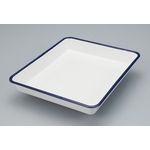 Enameled Photography Tray