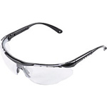 Twin-Lens Safety Glasses TSG-9160