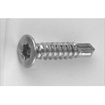 Countersunk Head DS Pias Screw