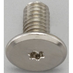 TORX Super Brazier Head Screw EA949TC-43