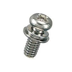 Brass Pan-Head Set Screw (With SW/PW) / B-0000-S1