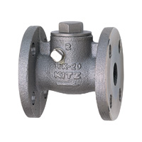 Stainless Steel General-Purpose 10K Swing Check (SCS14A) Valve Flange