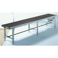 ø13 mm Flat Belt-Driven Roller Conveyor
