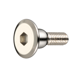 Joint Connector Bolt (A Type) JCB-A (Hex Socket)