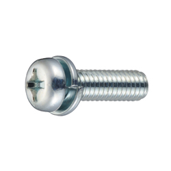 Phillips Pan Head Screw  P = 2 (SW)