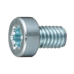 Low Head Screw with TORX Hole