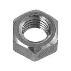 Hex Nut (1 Type) (Imported Item) (Taiwanese)