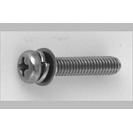 Phillips Pan Head Screws I=3 (SW+ISO Flat W)